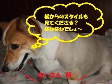 083_convert_20100905235904.jpg