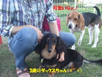 086_convert_20101017031016.jpg