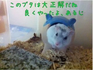 iphone_20110830231322.jpg