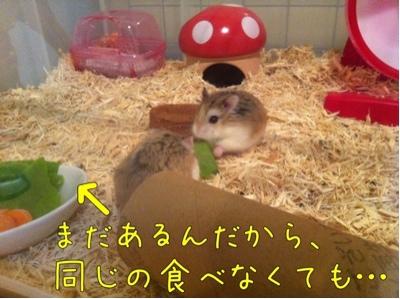 iphone_20111006211348.jpg