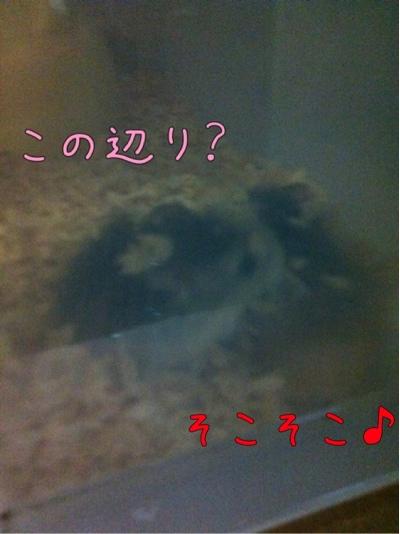 iphone_20111026075704.jpg