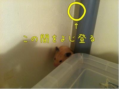 iphone_20111119081623.jpg