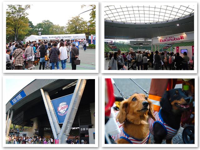 2011 Super Dogs Carnival