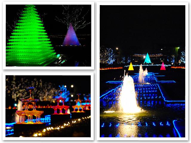 Winter Vista Illumination 2011