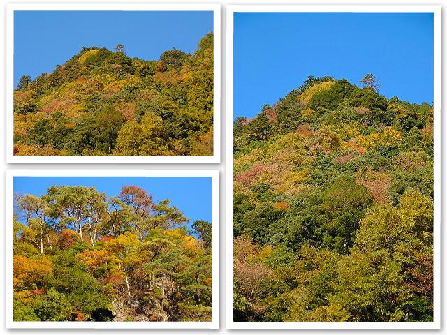 鳩の巣・御岳渓谷