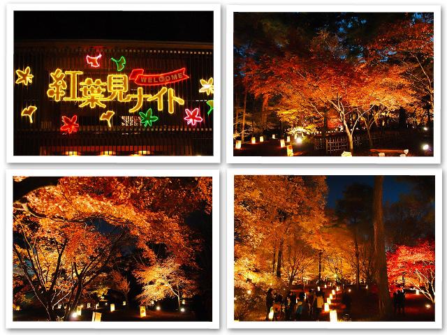 紅葉☆嵐山渓谷