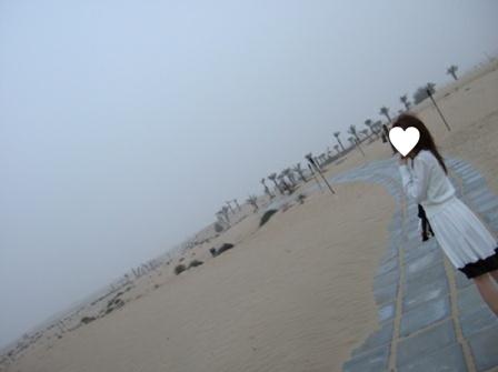 朝の砂漠1