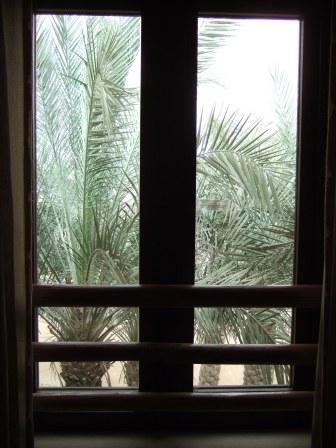 お部屋の窓から