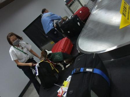手荷物検査2
