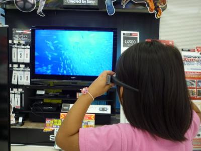 3Dテレビを見る羽桜