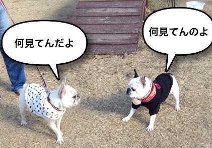 ムッシュ&おとめ