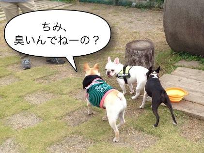 20121014_12.jpg