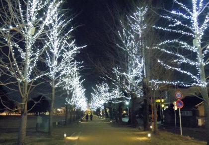 冬ソナストリート