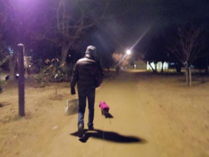コブ森散歩