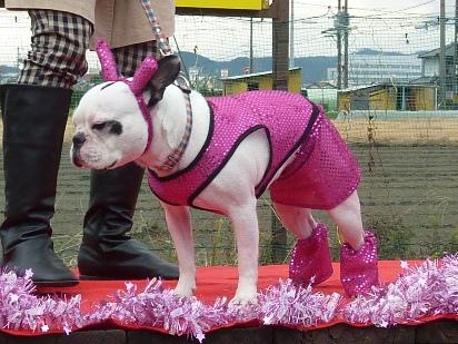ピンク大福くん