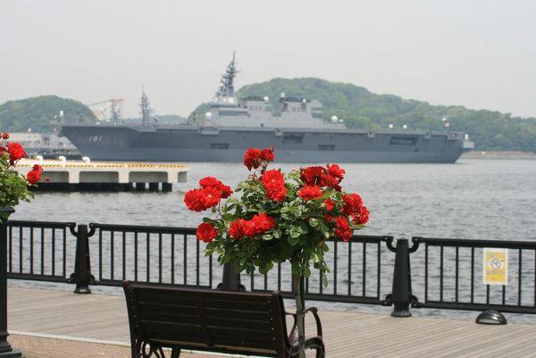 薔薇と軍艦①