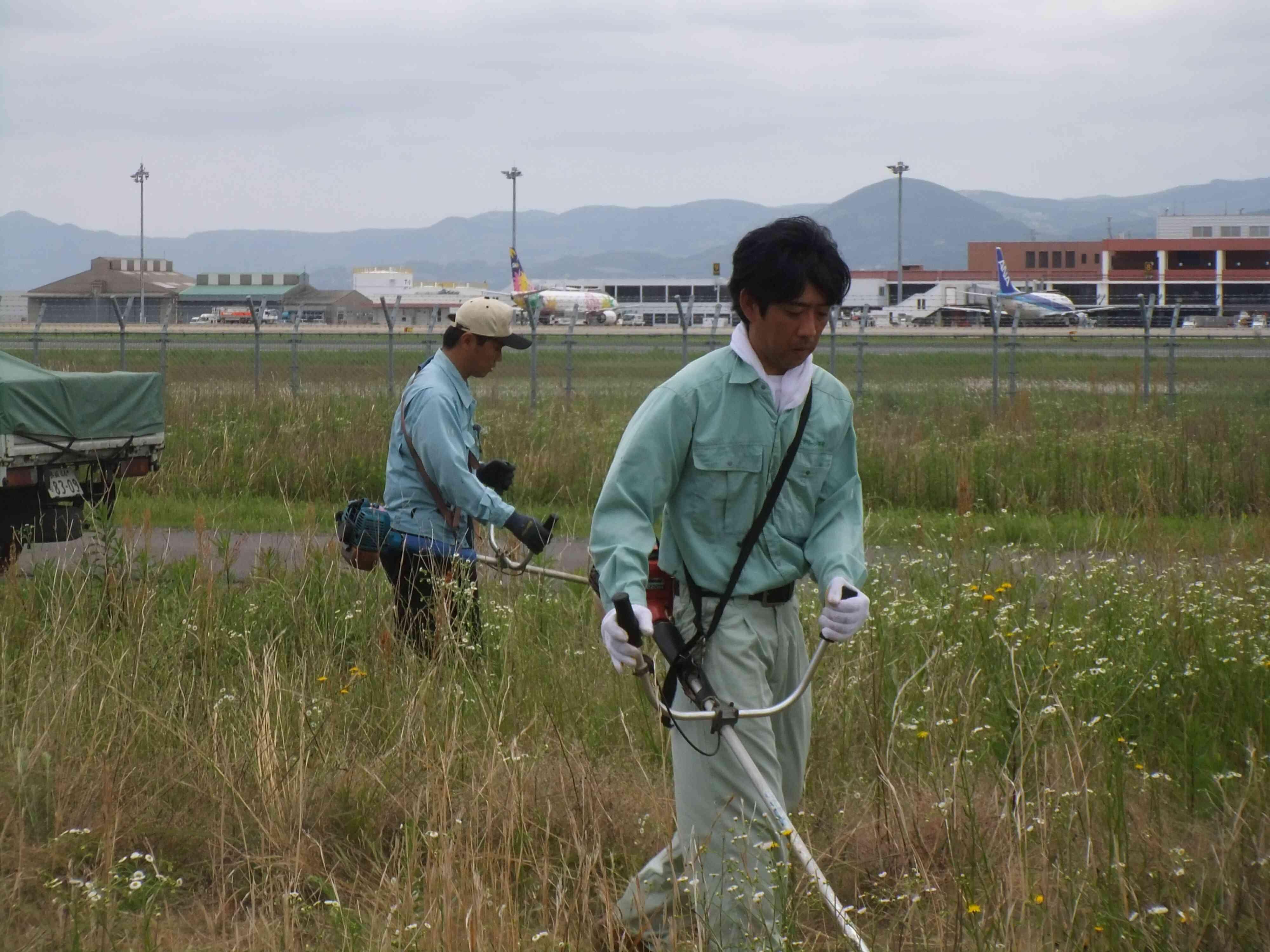 草刈状況1