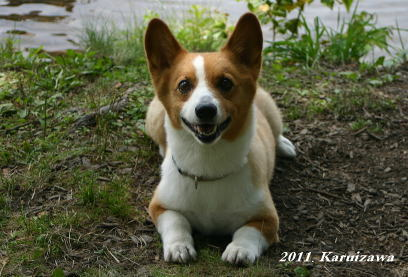 2011軽井沢24