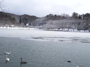 高松の凍り池