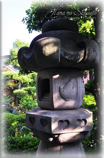 807-97.jpg
