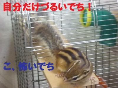 028_convert_20100402100006.jpg
