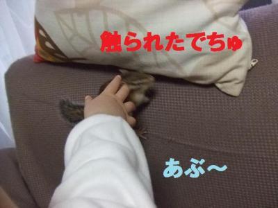 224_convert_20100402100118.jpg