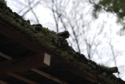 2010.3.12-13 なほと京都の旅 048
