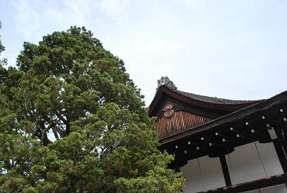 2010.3.12-13 なほと京都の旅 060