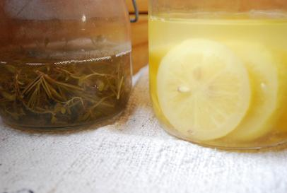 2010.5ハーブ酵母とレモン酵母 001