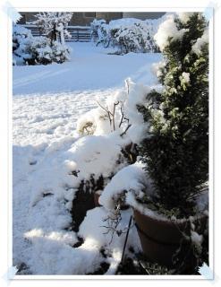 2012初雪!今年は半端ないよ