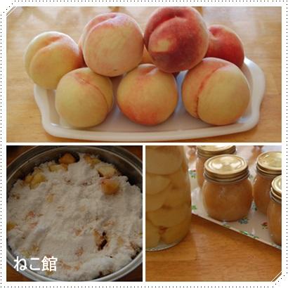 blog2_2014120316180643d.jpg