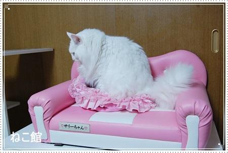 blog4_2014111313274112d.jpg