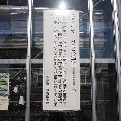 100515_8.jpg