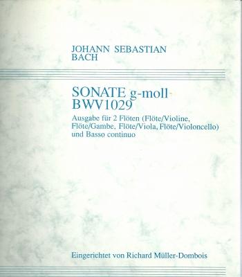 BWV1029Blog.jpg
