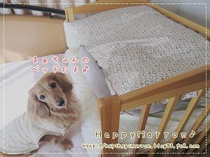 ぽかぽかベッド1