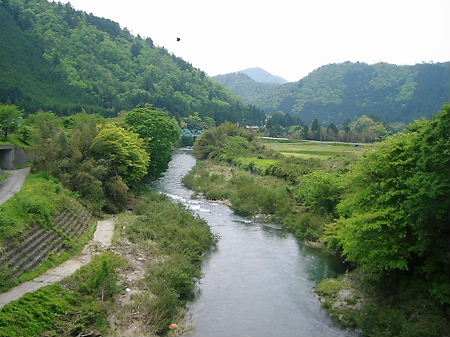 r19に架かる橋から由良川?を眺める