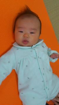 hokaze_convert_20120112195840.jpg