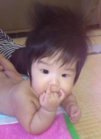 mmaho_convert_20120907124829.jpg