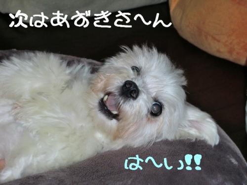 マッサージ6