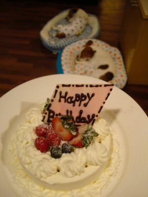 お誕生日おめでとうCUB!!