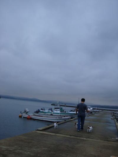 和倉をお散歩。