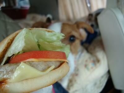 イタリアンチキンバーガー