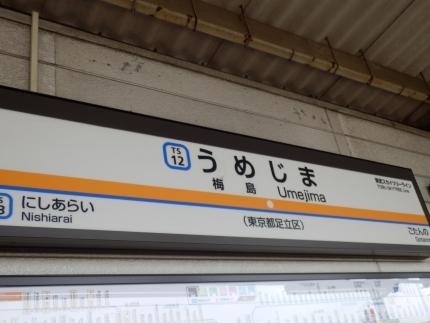 松本家ホームパーティー (1)