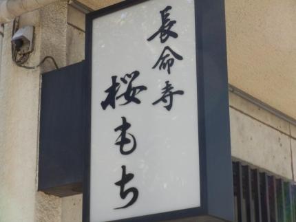 押上~向島 スカイツリー (27)