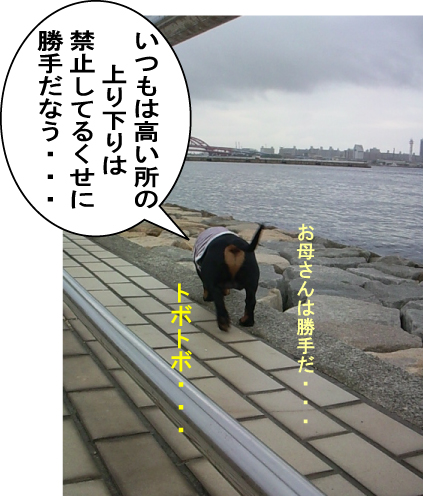 10_20100730132119.jpg