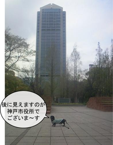 11_20100628162023.jpg