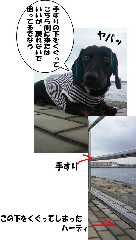 12_20100730140636.jpg