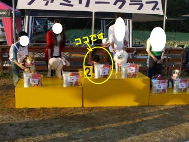 12_20101020152815.jpg