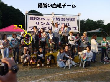 14_20101020152815.jpg