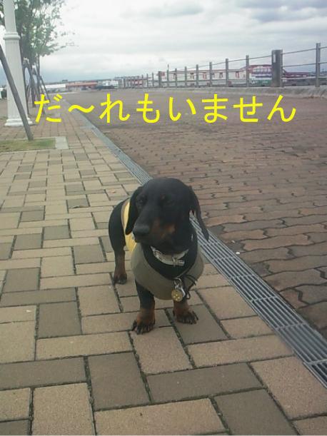 1_20100424013720.jpg